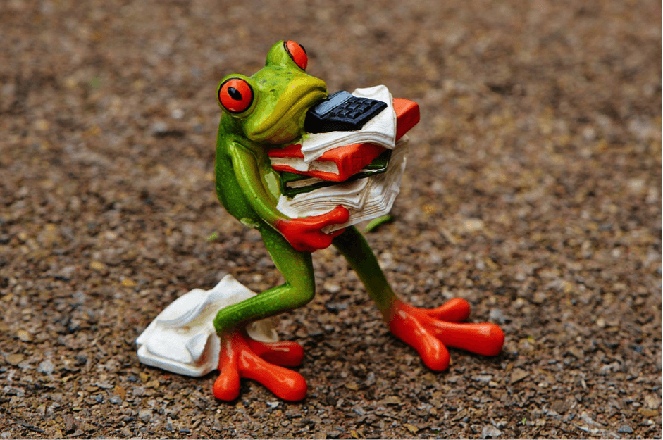 Moving office is easy for Frog.
