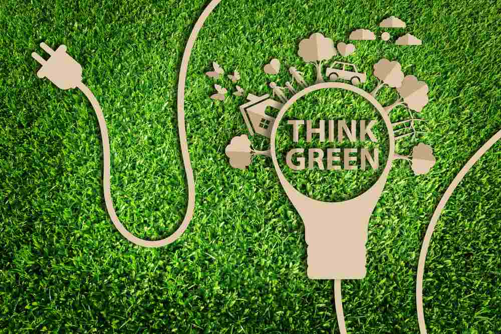 Why going green in the office benefits more than just the environment |  Entrepreneur & Business Website | Talk Business | Small, Medium Business  Advice, Tips | SME | Success