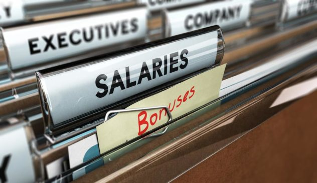 salary program