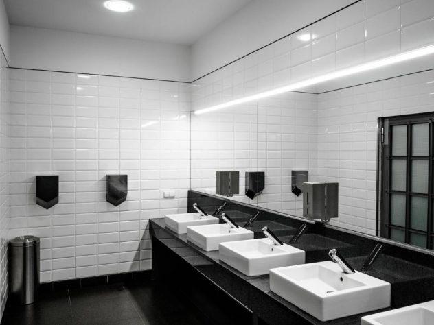toilet regulations