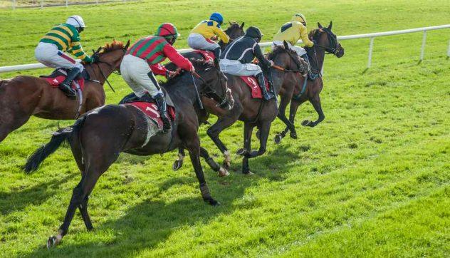 horse racing apps